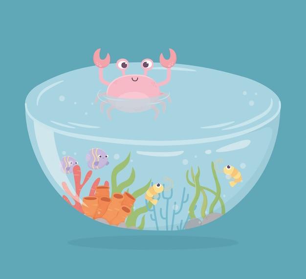 Caranguejo camarão peixes coral água em forma de tanque para peixes em ilustração em vetor mar dos desenhos animados