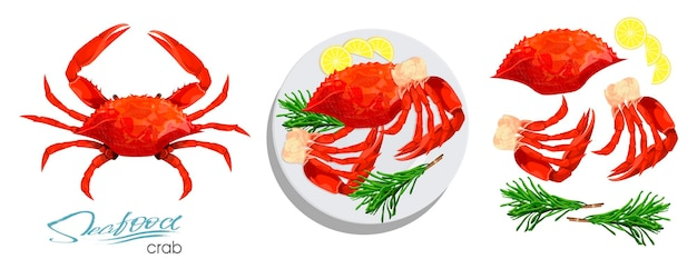 Caranguejo de carne com alecrim e limão no prato ilustração vetorial no estilo cartoon
