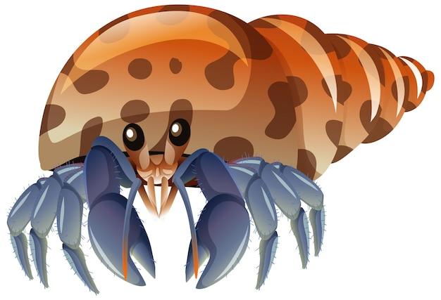 Caranguejo eremita em estilo cartoon sobre fundo branco