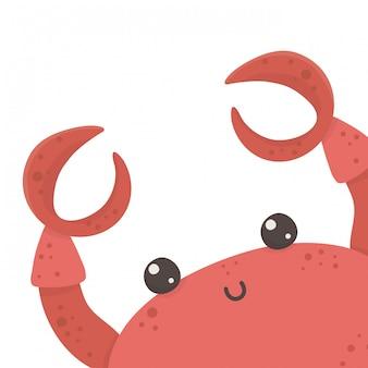 Caranguejo isolado dos desenhos animados