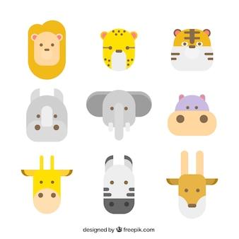 Caras de animais selvagens com design plano