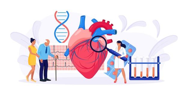 Cardiologia, diagnóstico cardiovascular do coração. médico cardiologista, consultando o paciente mais velho sobre doenças cardíacas, exame médico. pesquisa de transplante, ataque cardíaco, hipertensão, diabetes.