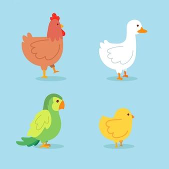 Caricatura, com, pássaro, e, galinha