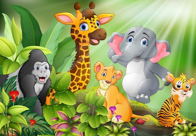 Caricatura, de, natureza, cena, com, animais selvagens