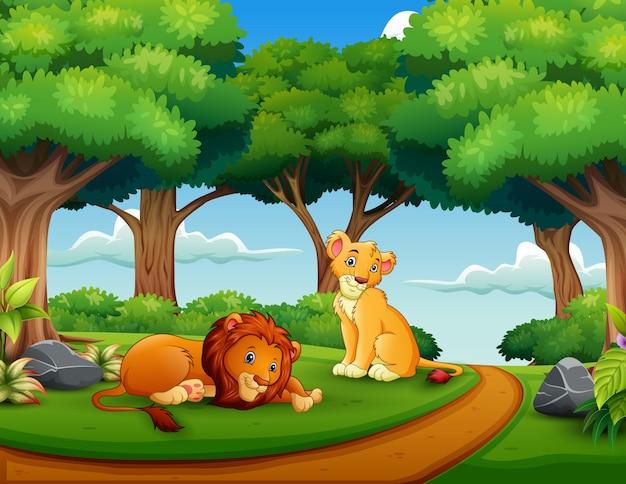 Caricatura, de, par leão, em, a, selva