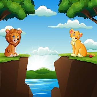 Caricatura, dois, leão, enfrentando, penhascos, com, natureza, fundo