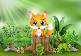 Caricatura, um, raposa, sentando, ligado, toco árvore, com, plantas verdes