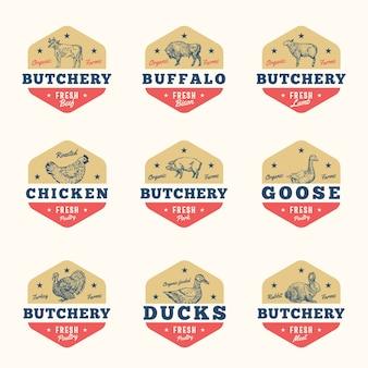 Carne orgânica e conjunto de sinais abstratos de aves, emblemas ou modelos de logotipo.