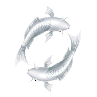 Carpas koi realista peixe oriental símbolo