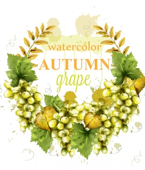 Cartão da aguarela da grinalda das uvas brancas