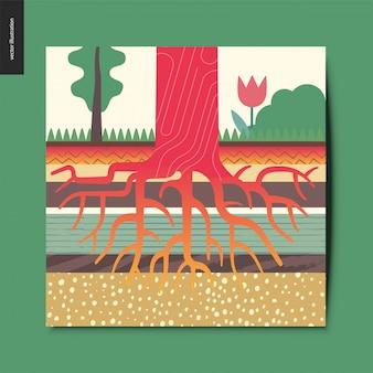 Cartão das raizes da árvore