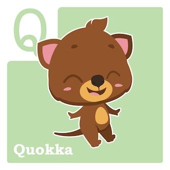 Cartão de alfabeto com letra q