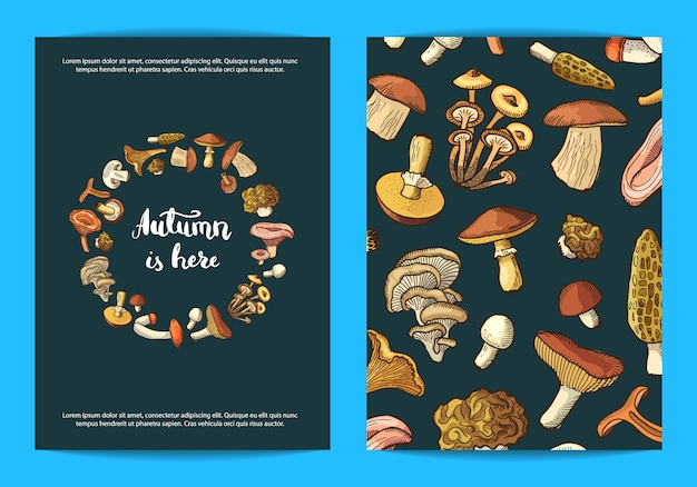 Cartão de cogumelos, modelo de panfleto
