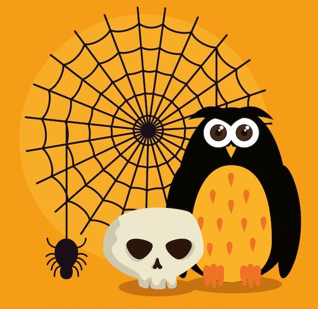 Cartão de dia das bruxas com teia de aranha e coruja