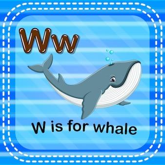 Cartão de memória letra w é para baleia