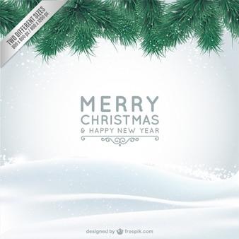 Cartão de natal com neve e ramos