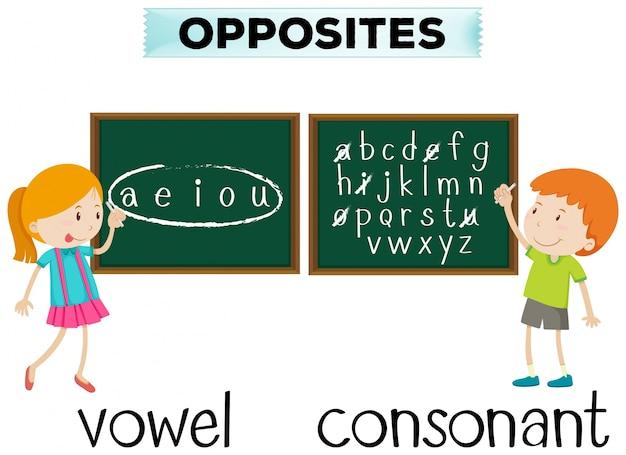 Cartão de palavra oposto para vogais e consoante