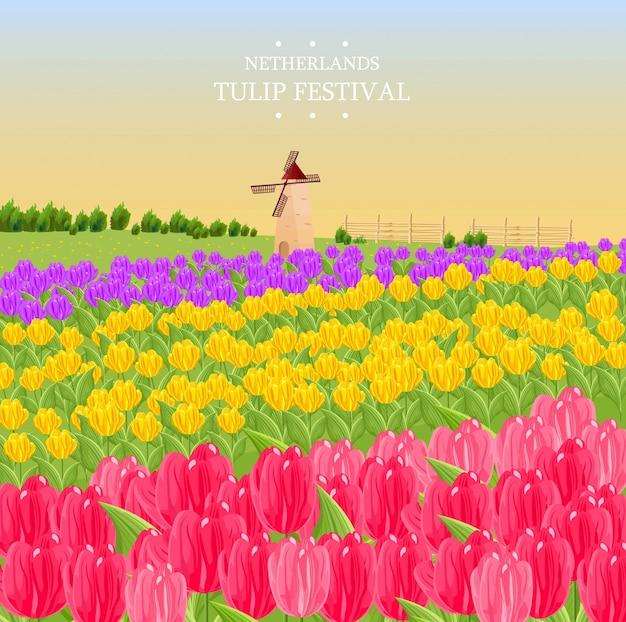 Cartão de primavera com tulipas e um moinho