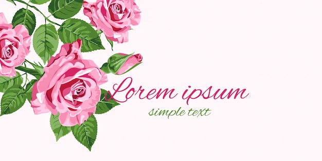 Cartão de rosas cor de rosa brilhante com lugar para texto