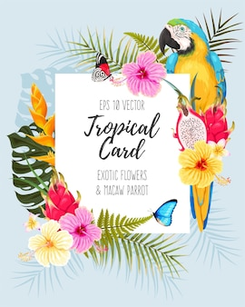 Cartão de vetor com flores tropicais e arara