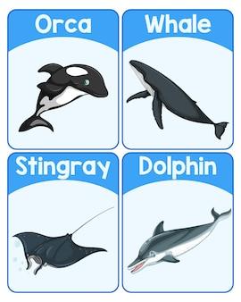 Cartão educacional com palavras em inglês sobre mamíferos marinhos
