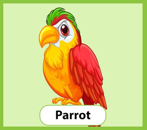 Cartão educacional de palavras em inglês do papagaio