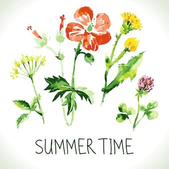 Cartão em aquarela floral. fundo retro vintage com flores silvestres. fundo de tema de verão