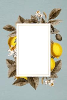 Cartão emoldurado de limão