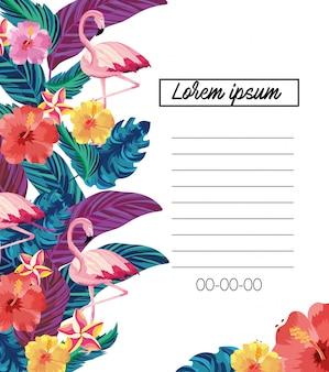 Cartão exótico com flores tropicais e flamingos