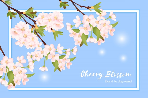 Cartão floral da flor de cerejeira