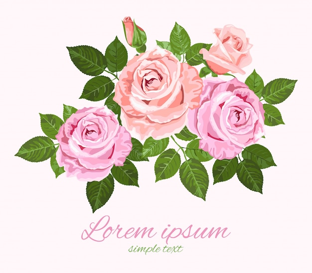 Cartão geeting com rosas cor de rosa e bege e folhas verdes