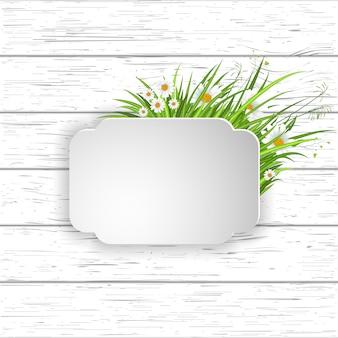 Cartão primavera com camomila florescendo