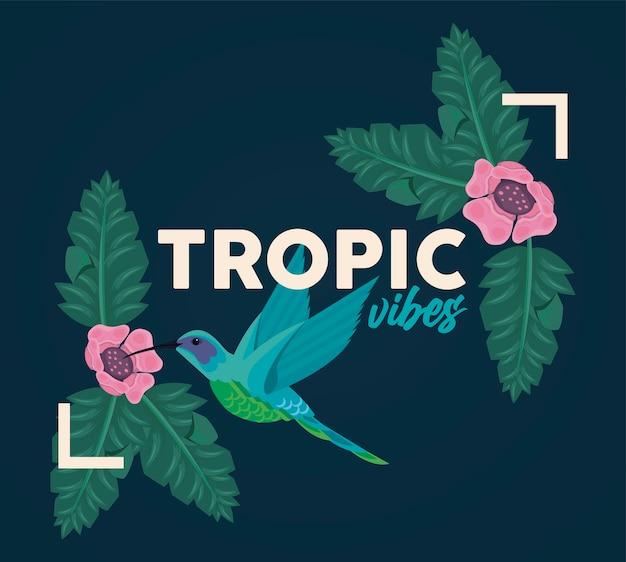 Cartaz com moldura retangular floral com vibrações tropicais e ilustração de pássaros