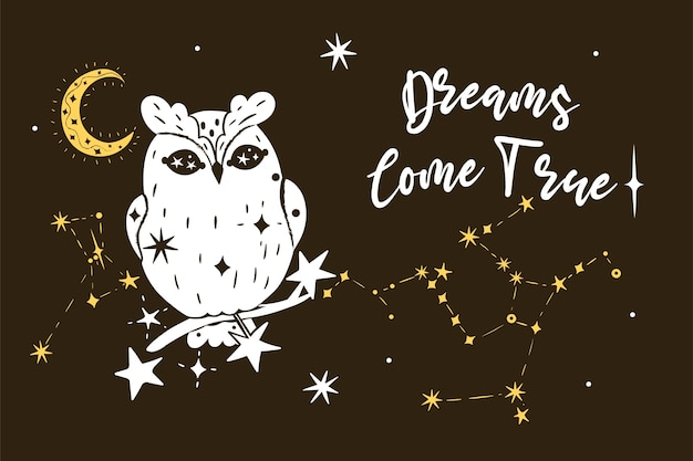 Cartaz com uma coruja, estrelas e a inscrição dreams come true.