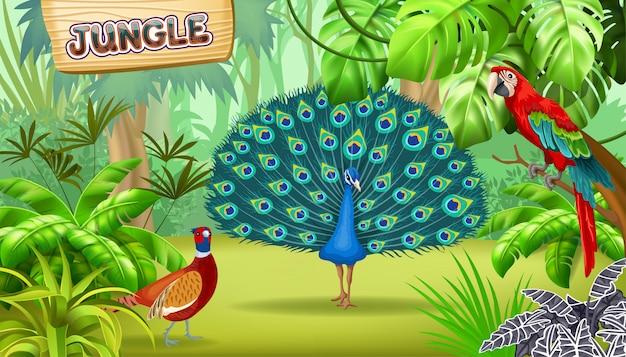Cartaz da selva tropical e pássaros.