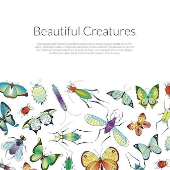 Cartaz de banner de insetos desenhados à mão