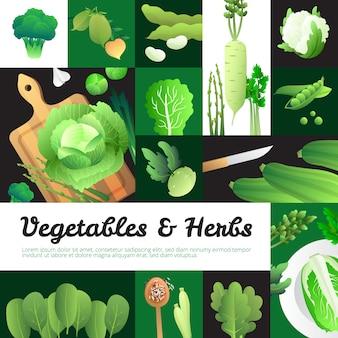 Cartaz de banners de comida vegetariana com repolho fresco orgânico e vegetais verdes