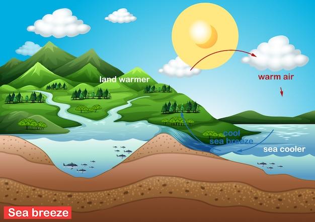 Cartaz de ciência para a brisa do mar