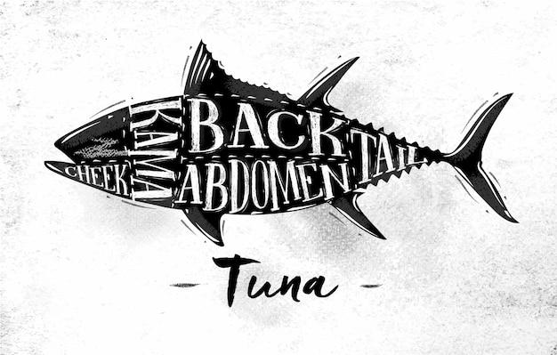 Cartaz de esquema de corte de atum com letras bochecha kama abdômen cauda traseira em estilo vintage