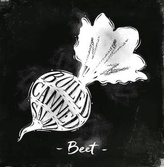 Cartaz de esquema de corte de beterraba com letras de salada enlatada cozida em estilo vintage