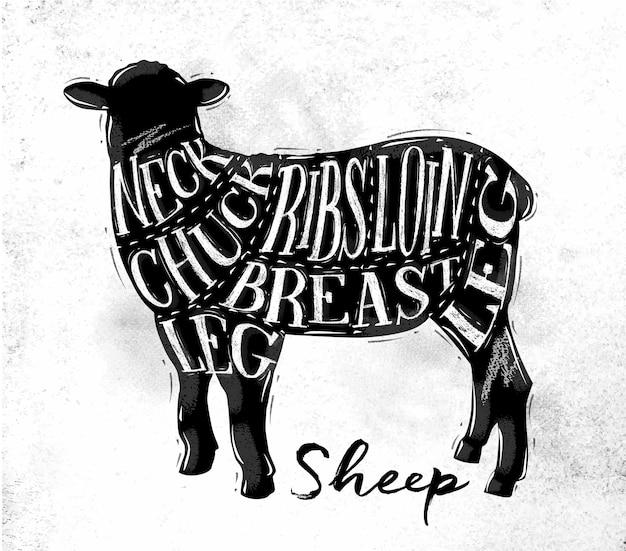 Cartaz de esquema de corte de ovelha ovelha lettering pescoço mandril costelas peito lombo perna em estilo vintage