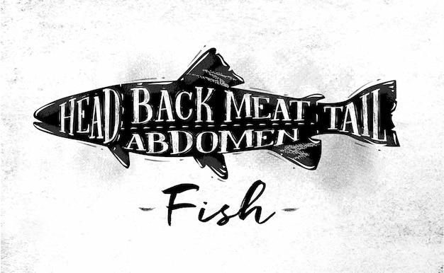 Cartaz de esquema de corte de peixe letras cabeça para trás carne, abdômen, cauda em estilo vintage