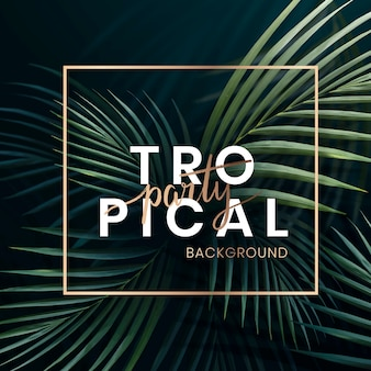 Cartaz de festa tropical