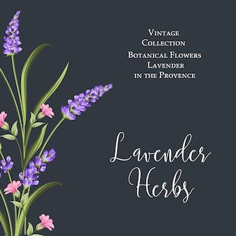 Cartaz de flores botânicas.