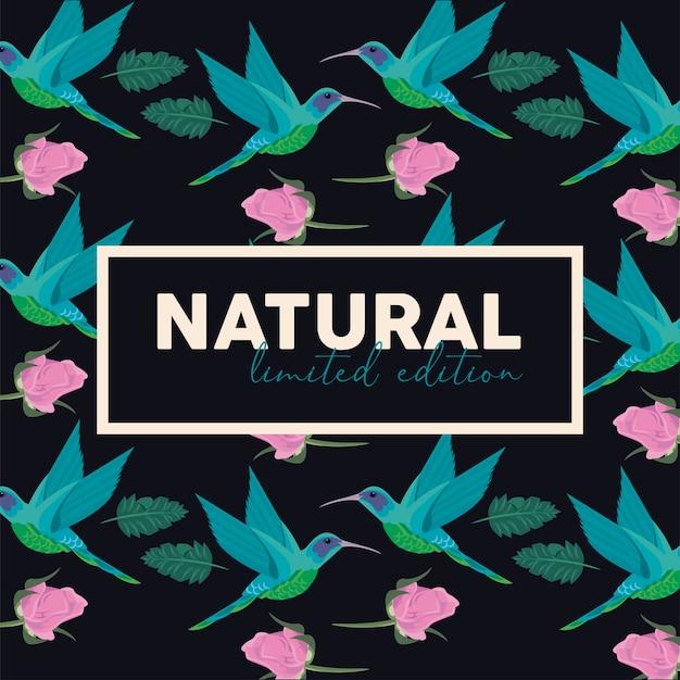 Cartaz de moldura retangular floral com palavra natural e design de ilustração de pássaros