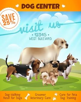 Cartaz de passeio dos cães