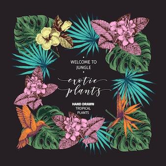 Cartaz de plantas tropicais de mão desenhada vector