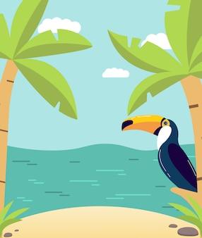 Cartaz de verão com a praia com palmeiras e a ilha tropical com pássaros exóticos, um tucano.