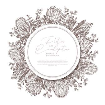 Cartaz desenhado à mão com protea e eucalipto com etiqueta de círculo ou ilustração de etiqueta