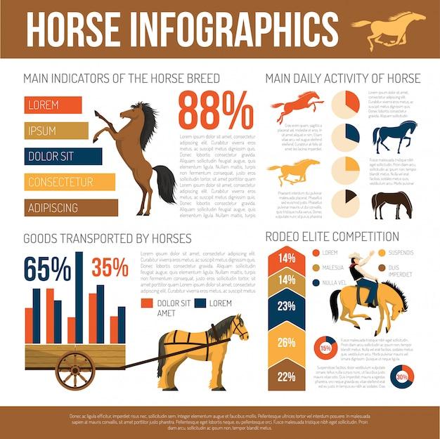 Cartaz infográfico de apresentação de raças de cavalo